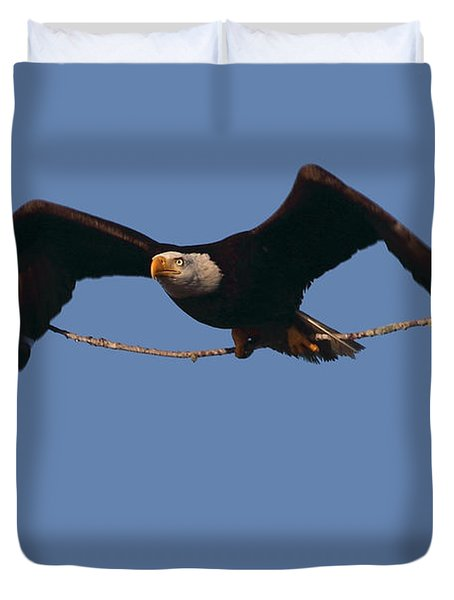 Bald Eagle With Nesting Supplies Duvet Cover by Meg Rousher