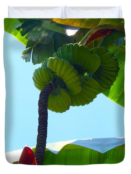 Banana Stalk Duvet Cover by Carey Chen