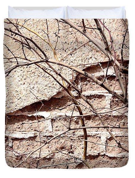 Bare Tree Adobe Wall Duvet Cover by Joe Kozlowski