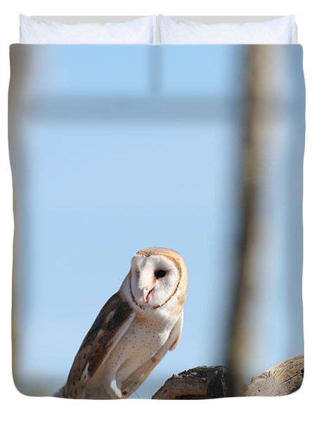 Barn Owl Duvet Cover by David S Reynolds