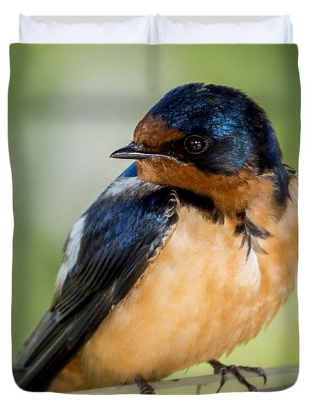 Barn Swallow Duvet Cover by Ernie Echols