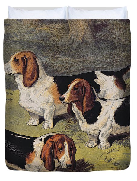 Basset Hounds Duvet Cover by English School