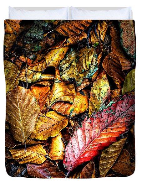 Beautiful Fall Color Duvet Cover by Meirion Matthias