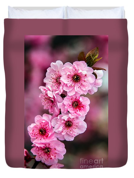 Beautiful Pink Blossoms Duvet Cover by Robert Bales