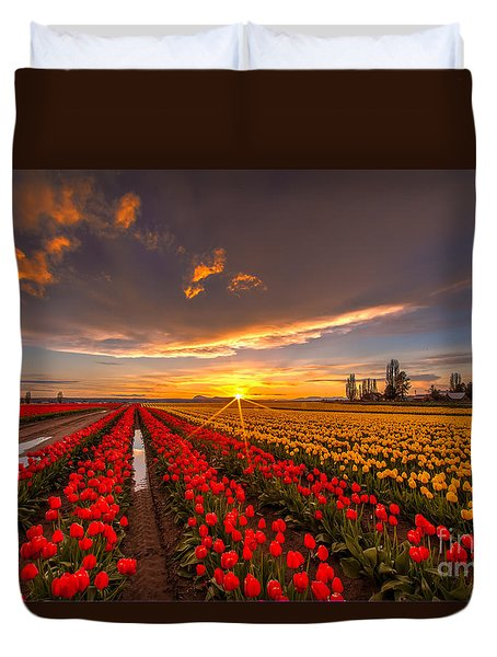 Beautiful Tulip Field Sunset Duvet Cover by Mike Reid