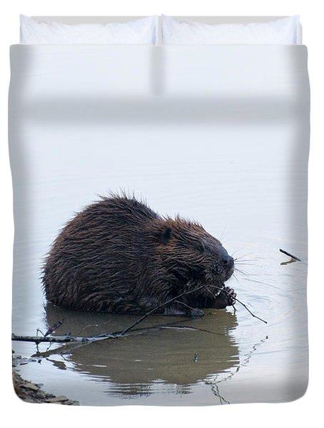 Beaver In The Shallows Duvet Cover by Chris Flees