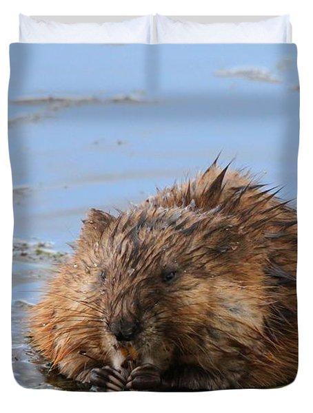 Beaver Portrait Duvet Cover by Dan Sproul