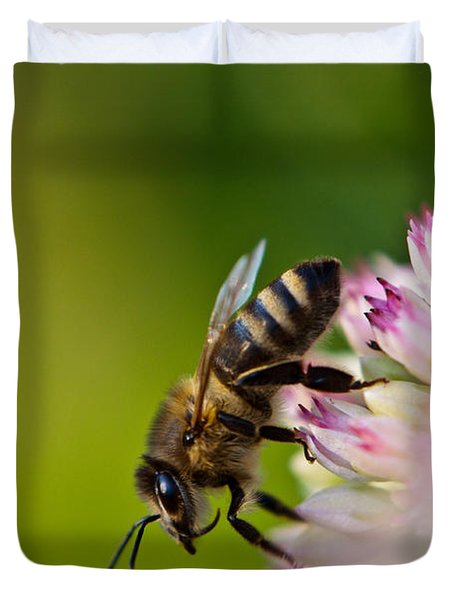 Bee Sitting On A Flower Duvet Cover by John Wadleigh