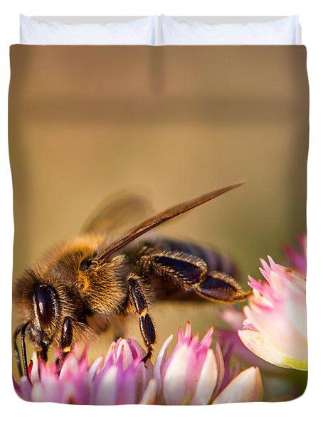 Bee Sitting On Flower Duvet Cover by John Wadleigh