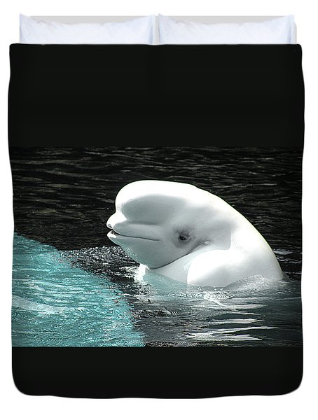 Beluga Whale Duvet Cover by Brian Chase