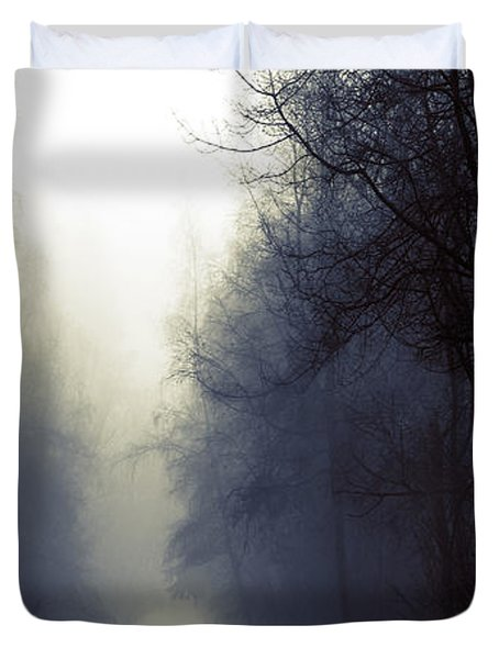 Beyond Duvet Cover by Lisa Knechtel