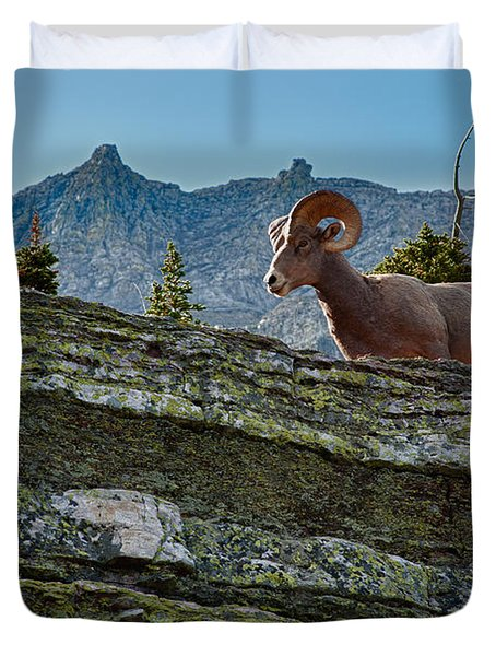 Bighorn Duvet Cover by Sebastian Musial