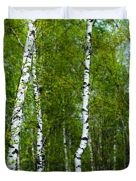 Birch Forest Duvet Cover by Hannes Cmarits