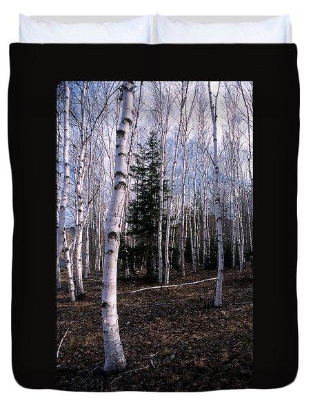 Birches Duvet Cover by Skip Willits