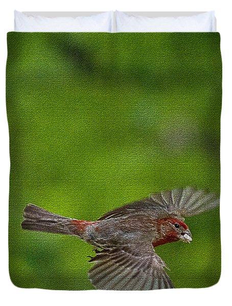 Bird Soaring With Food In Beak Duvet Cover by Dan Friend