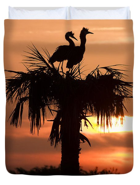 Birds At Sunrise On Florida Palm Tree Duvet Cover by Bill Swindaman