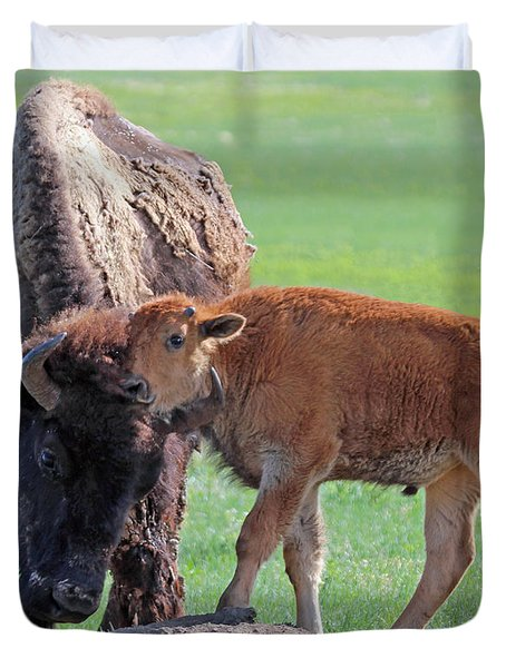 Duvet Cover featuring the photograph Bison With Young Calf by Bill Gabbert