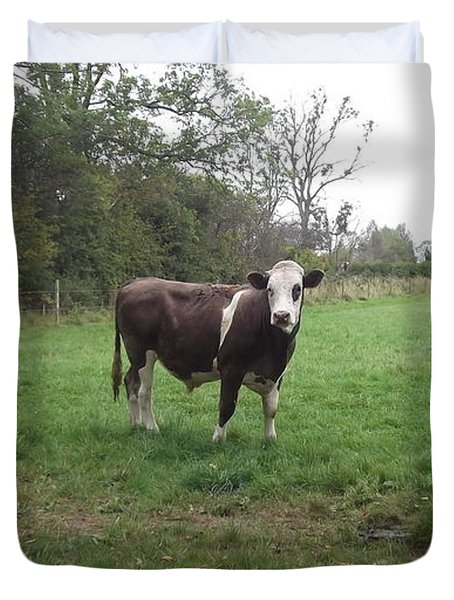 Black And White Bull Duvet Cover by John Williams