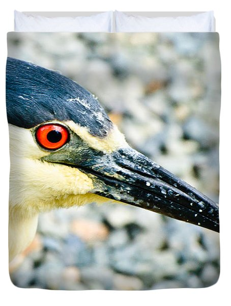 Black Crowned Night Heron 2 Duvet Cover by Bob and Nadine Johnston