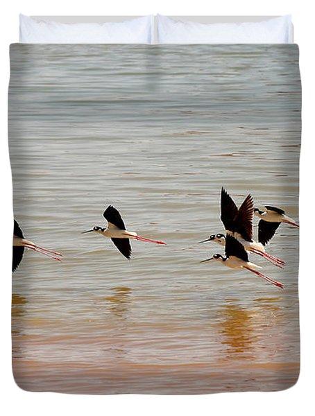 Black-necked Stilt - Lake Powell Duvet Cover by Julie Niemela