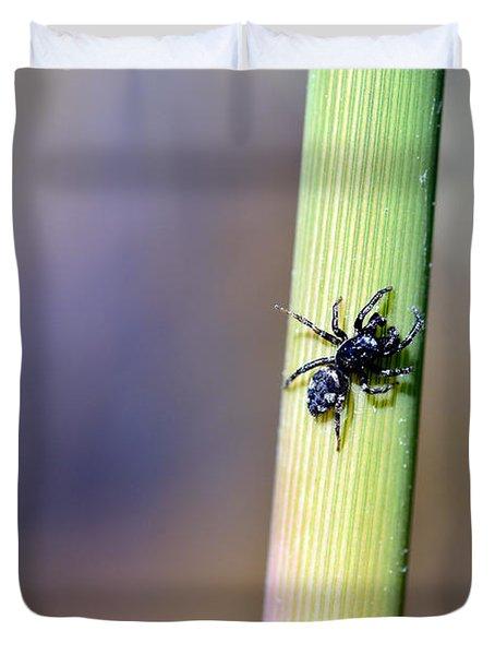 Black Spider In Reeds Duvet Cover by Toppart Sweden