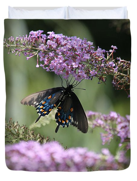 Black Swallowtail1-featured In Newbies-nature Wildlife- Digital Veil-comfortable Art Groups Groups Duvet Cover by EricaMaxine  Price