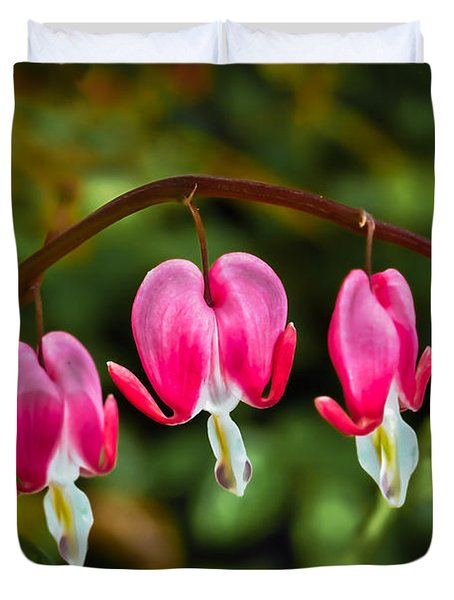 Bleeding Hearts Duvet Cover by Robert Bales