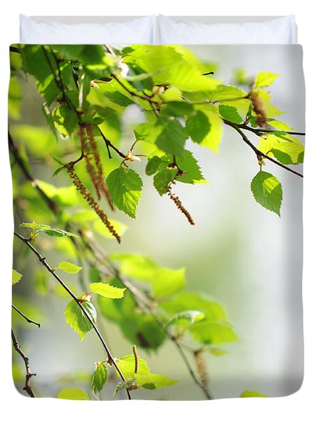 Blooming Birch Tree At Spring Duvet Cover by Jenny Rainbow