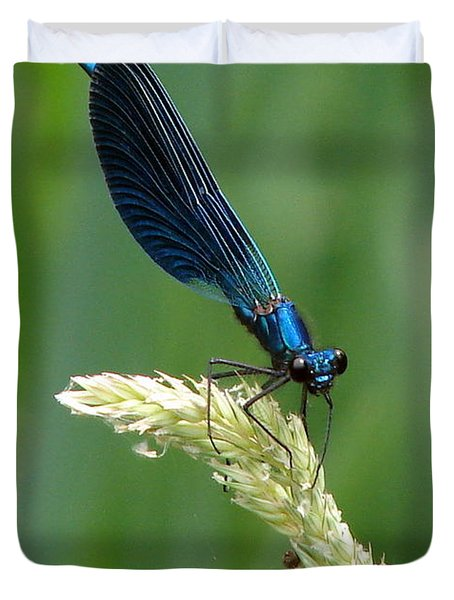 Blue Damselfly Duvet Cover by Ramona Johnston