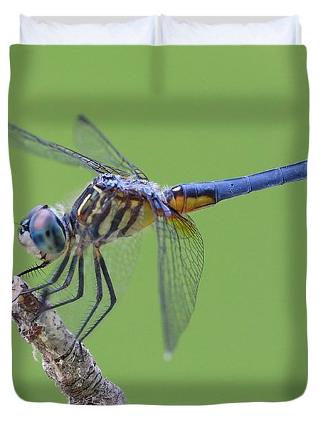 Blue Dasher Dragonfly Duvet Cover by Ester  Rogers