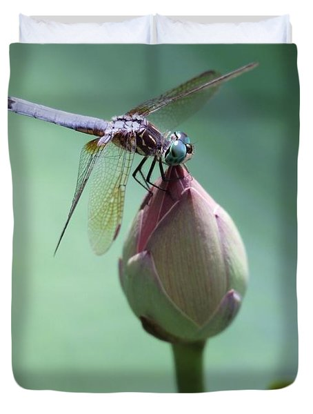 Blue Dragonflies Love Lotus Buds Duvet Cover by Sabrina L Ryan