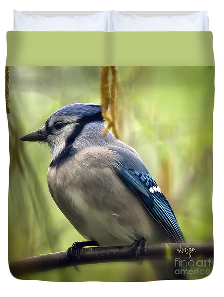 Blue Jay On A Misty Spring Day - Square Format Duvet Cover by Lois Bryan