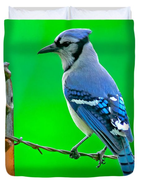 Blue Jay On The Fence Duvet Cover by Robert Frederick