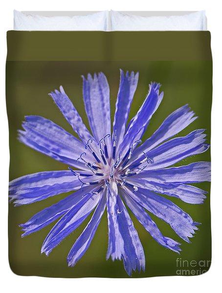 Blue Star... Duvet Cover by Nina Stavlund