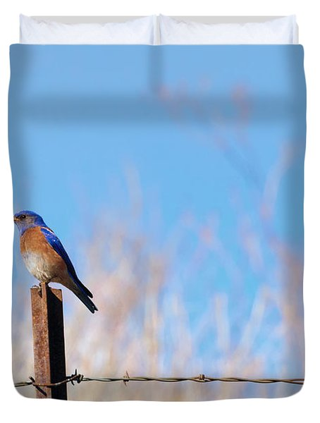 Bluebird On A Post Duvet Cover by Mike  Dawson
