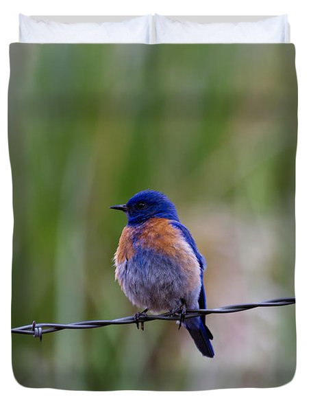 Bluebird On A Wire Duvet Cover by Mike  Dawson