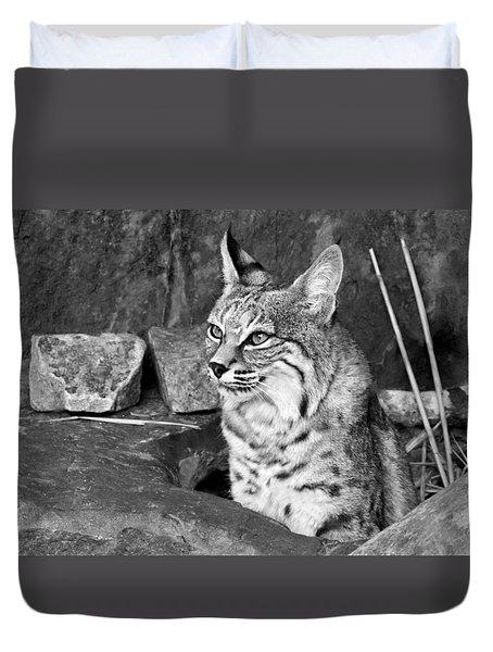 Bobcat Duvet Cover by Nikolyn McDonald