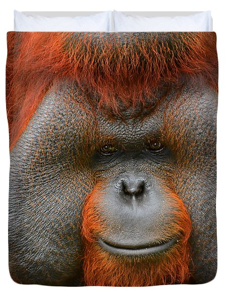 Bornean Orangutan Duvet Cover by Lourry Legarde