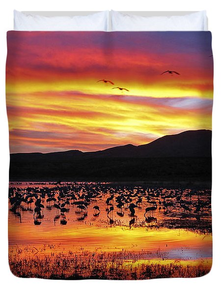Bosque Sunset II Duvet Cover by Steven Ralser