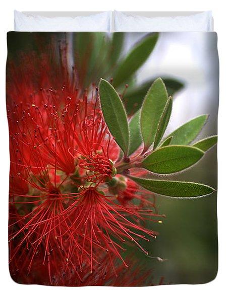 Bottlebrush In Red Duvet Cover by Joy Watson