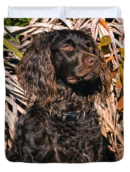 Boykin Spaniel Portrait Duvet Cover by Timothy Flanigan