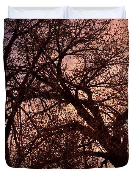 Branching Out At Sunset Duvet Cover by James BO  Insogna