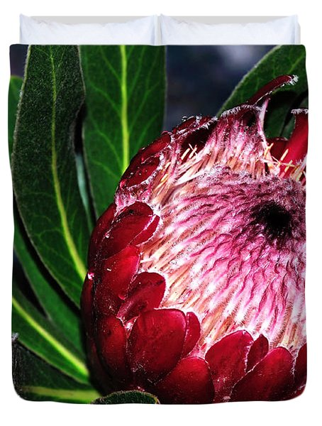 Bright'n'happy Protea Duvet Cover by Kaye Menner