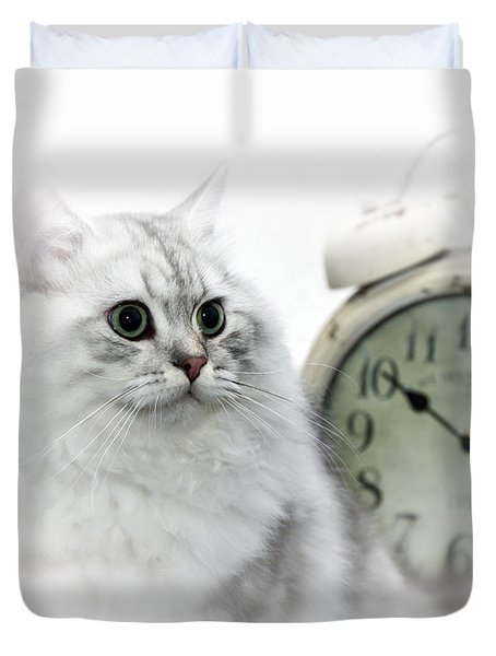 British Longhair Cat Time Goes By II Duvet Cover by Melanie Viola