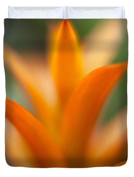 Bromeliad Flow Duvet Cover by Mike Reid