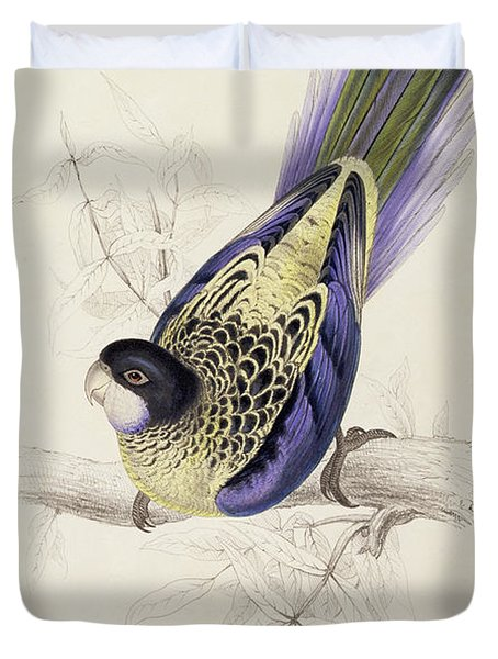 Browns Parakeet Duvet Cover by Edward Lear
