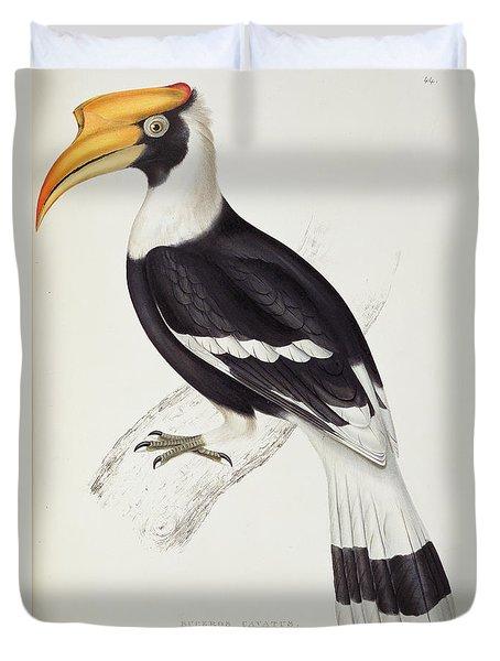 Great Hornbill Duvet Cover by John Gould