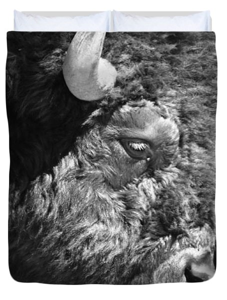 Buffalo Portrait Duvet Cover by Robert Frederick
