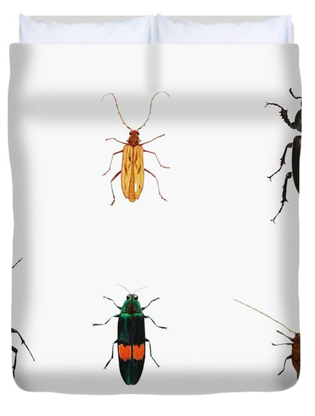 Bugs Duvet Cover by Ele Grafton
