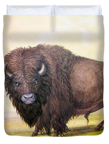 Bull Buffalo Duvet Cover by George Catlin